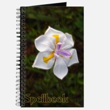 Orchid Spellbook