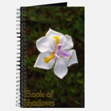 Orchid Book of Shadows