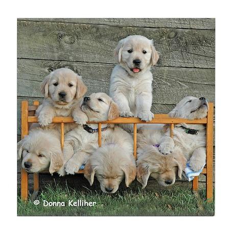 Nap Time PuppiesTile Coaster