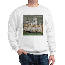 Nap Time Puppies Sweatshirt