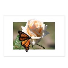 Jan's Rose & Monarch Postcards (Package of 8)