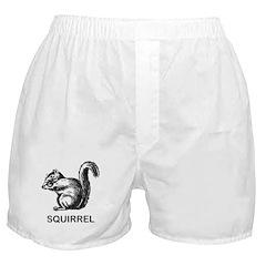 Vintage Squirrel Boxer Shorts