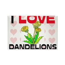 I Love Dandelions Rectangle Magnet