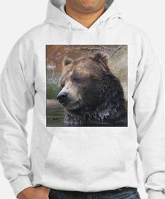 Grizzly Bear Cute Face Hoodie