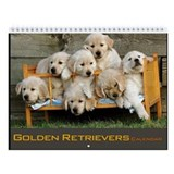 Golden retriever Calendars
