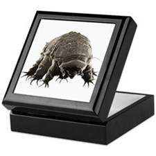 Water Bear Keepsake Box