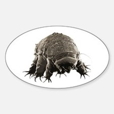 Water Bear Oval Decal