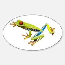 Red-Eyed Tree Frog Oval Decal