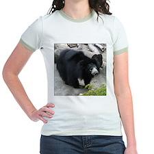 Sloth Bear T