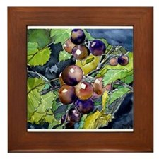 grapevine grapes fruit still Framed Tile