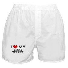 I Love My Cesky Terrier Boxer Shorts