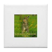 Pubic Hare Tile Coaster