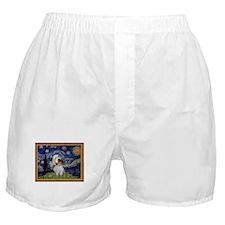 Starry Night PBGV Boxer Shorts