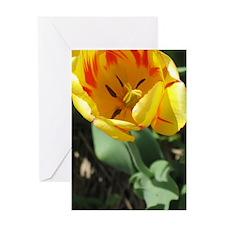 Cute Tulip bulbs Greeting Card