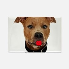 Palin Pit Bull Rectangle Magnet