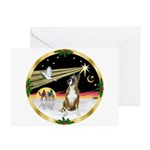 XmasDove/Boxer Greeting Cards (Pk of 10)