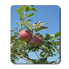 Apple Orchard Mousepad