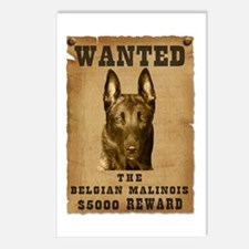 """""""Wanted"""" Belgian Malinois Postcards (Package of 8)"""