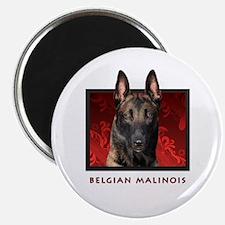 Belgian Malinois Magnet