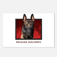 Belgian Malinois Postcards (Package of 8)