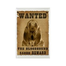 """""""Wanted"""" Bloodhound Rectangle Magnet"""