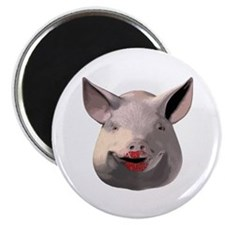 Lipstick Pig Magnet