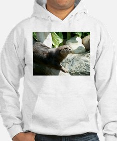 Otter in the Sun Hoodie