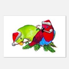 Christmas Parrot Postcards (Package of 8)