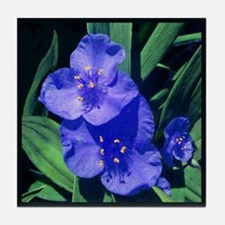 Dayflower Tile Coaster