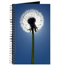 Funny Dandelion wishes Journal