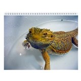 Bearded dragon Calendars