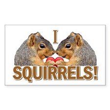 I Heart / Love Squirrels! Rectangle Decal