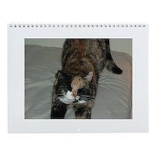 Calico Cat Wall Calendar