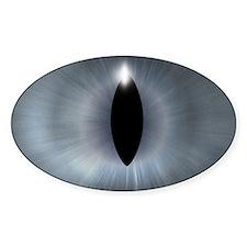 Cat's Eye Gray Halloween Oval Decal