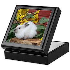 Cute Jersey wooly rabbit Keepsake Box