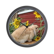Funny Fuzzy lop Wall Clock