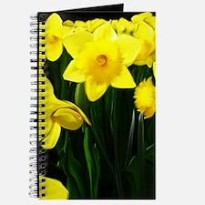 Yellow Daffoldils Journal