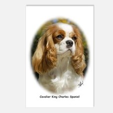 Cavalier King Charles Spaniel 9R026D-154 Postcards