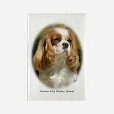 Cavalier King Charles Spaniel 9R026D-154 Rectangle