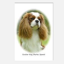 Cavalier King Charles Spaniel 9F97D-19 Postcards (