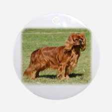 Cavalier King Charles Spaniel 9Y156D-130 Ornament