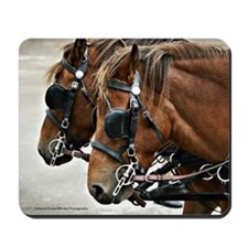 Carriage Horse Mousepad