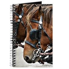 Carriage Horse Journal