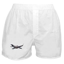 Komodo Dragon Boxer Shorts