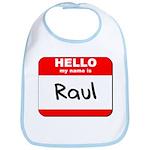 Hello my name is Raul Bib