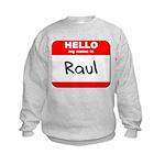 Hello my name is Raul Kids Sweatshirt