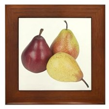 Some Pears On Your Framed Tile