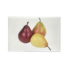 Some Pears On Your Rectangle Magnet (10 pack)