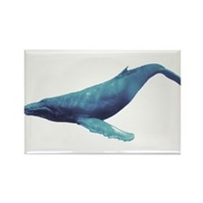 Humpback Whale Rectangle Magnet (100 pack)