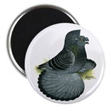 """English Trumpeter Blue Check 2.25"""" Magnet (10"""